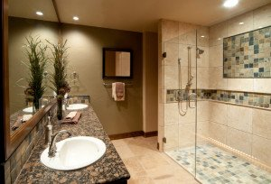 Small Bathroom Ideas Fitchburg WI